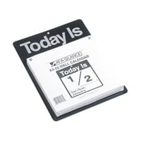 At-A-Glance K400 9 3/8 inch x 12 inch Today Is Daily January 2019 - December 2019 Wall Calendar