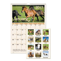 At-A-Glance DMW40128 12 inch x 17 inch Horse Monthly January 2018 - December 2018 Wirebound Wall Calendar