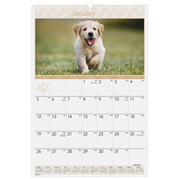 At-A-Glance DMW16728 15 1/2 inch x 22 3/4 inch Puppy Monthly January 2020 - December 2020 Wirebound Wall Calendar