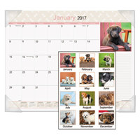 At-A-Glance DMD16632 22 inch x 17 inch Monthly January 2019 - December 2019 Puppies Desk Pad Calendar