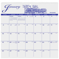At-A-Glance G100017 11 3/4 inch x 12 inch Illustrator's Edition Monthly January 2020 - December 2020 Wirebound Wall Calendar