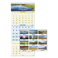 At-A-Glance DMW50328 12 inch x 27 inch Scenic 3-Month Reference December 2018 - January 2020 Wirebound Wall Calendar