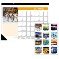 At-A-Glance SKW80000 22 inch x 17 inch 2020 Successories Motivational Desk Pad