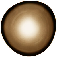 World Tableware PEB-6-T Pebblebrook 10 3/8 inch Tiger Organic Porcelain Plate - 12/Case