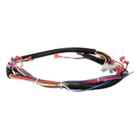 Duke 512786 Wire Harness