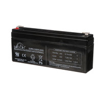 Globe E133100 Battery