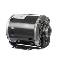 Multiplex 5009598 Pump Motor