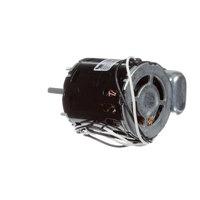 Tecumseh 810F050C20C Motor