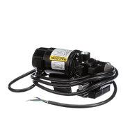Hickory P019 Motor