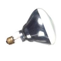 Hatco 02.30.100.00 Safety Coated Lamp 250w 240v