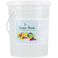 Regal Veggie Wash - Fruit and Vegetable Wash - Ecolab® 15932 Alternative - 5 Gallon Pail
