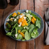 10 Strawberry Street BISEKI-8RD Biseki 8 inch Round Blue Stoneware Salad Plate - 24/Case