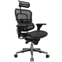 Eurotech Seating ME7ERG-W09-1 Ergohuman Black Mesh High Back Swivel Office Chair