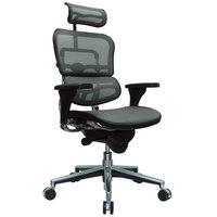 Eurotech Seating ME7ERG-W09-53 Ergohuman Grey Mesh High Back Swivel Office Chair