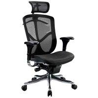 Eurotech Seating FUZ9LX-HI-BKALU Fuzion Black Luxury Mesh High Back Swivel Office Chair with Head Rest