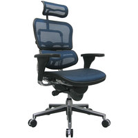 Eurotech Seating ME7ERG-KM15 Ergohuman Blue Mesh High Back Swivel Office Chair