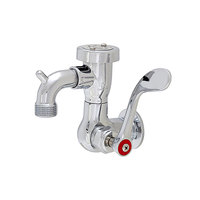 Fisher 56111 Wall Mounted Service Sink Faucet with 3 inch Service Sink Spout, Garden Hose Outlet, and Wrist Handle