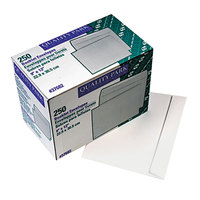 Quality Park 37682 #90 9 inch x 12 inch White Gummed Seal File Envelope - 250/Box