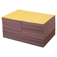 Pacon 104120 Tru-Ray 9 inch x 12 inch / 12 inch x 18 inch Assorted Color Case of 76# Construction Paper - 2000/Sheets