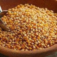 Carnival King 5 lb. Organic Yellow Mushroom Popcorn Kernels