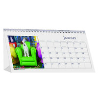House of Doolittle 3659 8 1/2 inch x 4 1/2 inch Recycled Puppy Photos Monthly January 2020 - December 2020 Desk Tent Calendar