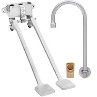 Fisher 73409 Backsplash Mounted Hand Washing Faucet with 6 inch Rigid Gooseneck Nozzle, 0.35 GPM PCA Spray Aerator, Dual Foot Valves, and Elbow