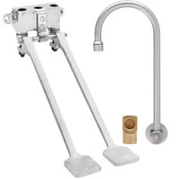 Fisher 73408 Backsplash Mounted Hand Washing Faucet with 12 inch Rigid Gooseneck Nozzle, 0.35 GPM PCA Spray Aerator, Dual Foot Valves, and Elbow
