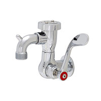 Fisher 55328 Wall Mounted Stainless Steel Service Sink Faucet with 3 inch Service Sink Spout, Garden Hose Outlet, and Wrist Handle