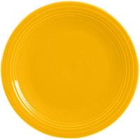 Homer Laughlin China Plates