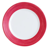 Arcoroc H4559 Opal Brush Cherry 9 inch Hospital Plate by Arc Cardinal - 24/Case