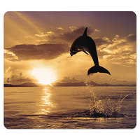Fellowes 5913401 Dolphin Nonskid Base Recycled Mouse Pad