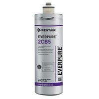 Everpure EV9617-05 2CB5 Filter Cartridge, 5 Micron, 1 GPM