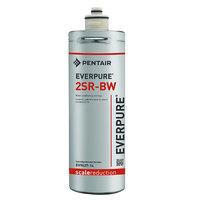 Everpure EV9627-14 2SR-BW Filter Cartridge