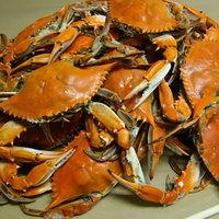 Linton's Seafood 6 1/2 inch Medium Seasoned Steamed Jumbo Maryland Blue Crabs - 12/Case