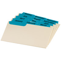Oxford 03513 3 inch x 5 inch 12-Month Blue Index Card Guide