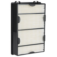 Holmes HAPF600PDQ-U Allergen and Mold True HEPA Filter for Air Purifiers