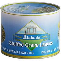 4.4 lb. Stuffed Grape Leaves