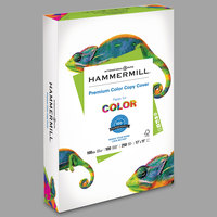 Hammermill 133202 11 inch x 17 inch Premium Photo White Ream of 100# Color Copy Cover Paper - 250/Sheets