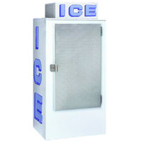 Polar Temp 300CW Cold Wall Outdoor Ice Merchandiser - 30 cu. ft.