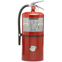 Buckeye 20 lb. Standard Dry Chemical Fire Extinguisher with Wall Mount - Rechargeable Untagged - UL Rating 120-B:C