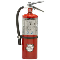 Buckeye 5 lb. Standard Dry Chemical Fire Extinguisher with Wall Mount - Rechargeable Untagged - UL Rating 40-B:C