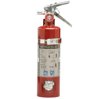 Buckeye 2.5 lb. Standard Dry Chemical Fire Extinguisher with DOT Vehicle Bracket - Rechargeable Untagged - UL Rating 10-B:C