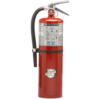 Buckeye 10 lb. Standard Dry Chemical Fire Extinguisher with Wall Mount - Rechargeable Untagged - UL Rating 40-B:C