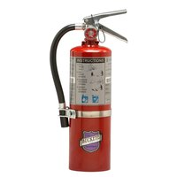 Buckeye 5 lb. Purple K Fire Extinguisher with Fixed Nozzle - Rechargeable Untagged with DOT Vehicle Bracket - UL Rating 10-B:C