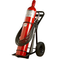 Buckeye 100 lb. Carbon Dioxide Fire Extinguisher - Rechargeable Untagged - UL Rating 20-B:C