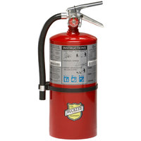 Buckeye 10 lb. ABC Dry Chemical Fire Extinguisher - Rechargeable Untagged with Wall Mount - UL Rating 4-A:80-B:C