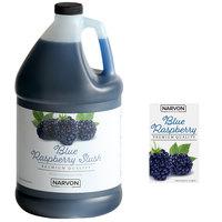 Narvon 1 Gallon Blue Raspberry Slushy Syrup - 4/Case