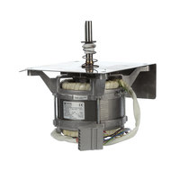 Alto-Shaam 14885 I,Motor Sub Asb, 20.2 Ec4