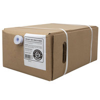 Boylan Bottling Co. 5 Gallon Bag in Box Creamy Red Birch Beer Beverage / Soda Syrup