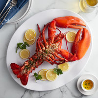 Boston Lobster Company 25 lb. Case of 4-6 lb. Live Hard Shell Lobsters